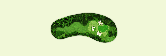 No.15 Hole Map